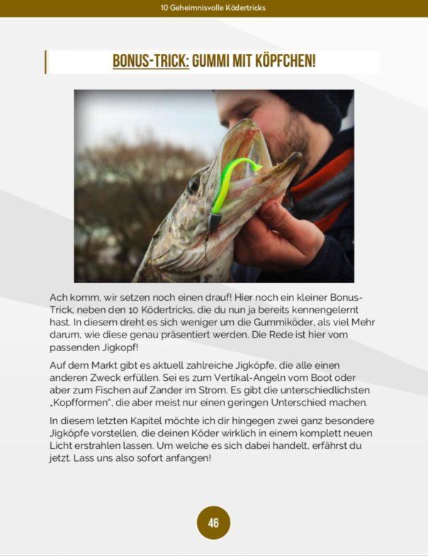 10 geheimnisvolle Ködertricks - Bonus Tipps Bleiköpfe