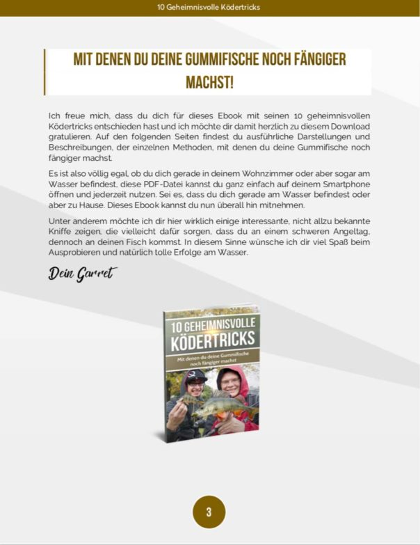 10 geheimnisvolle Ködertricks - Einleitung Buch