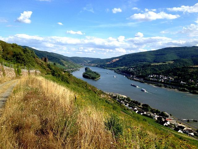 Aalangeln am Rhein