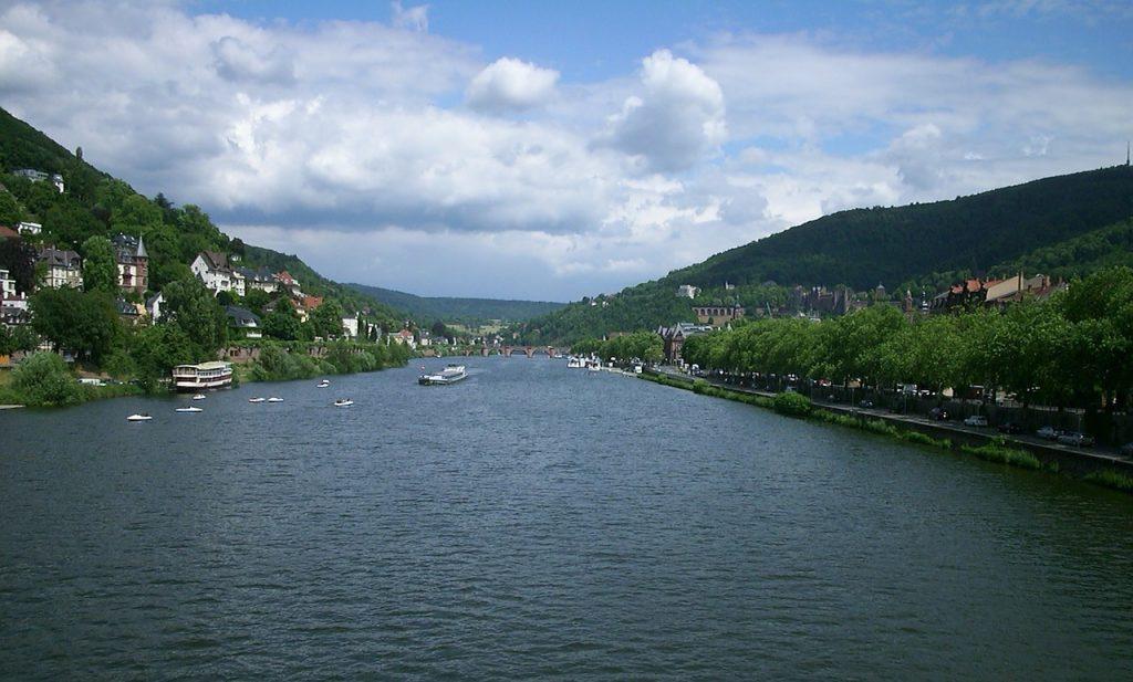 Angeln am Neckar - Bestände reduzieren sich