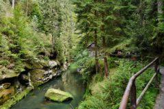 Angeln in Tschechien ohne Angelschein – das musst du wissen
