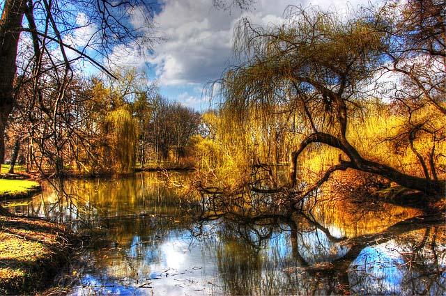Angelschein Amberg Ufer See