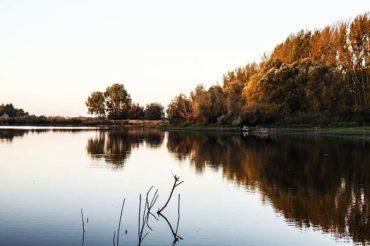 Angelschein Bergheim – in wenigen Schritten zum Fischereischein