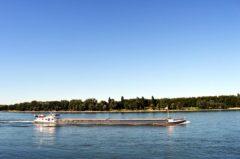 Fischereischein Bonn: Step by Step Anleitung zum Bestehen der Prüfung