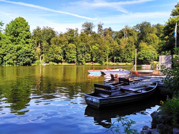 Angelschein Darmstadt Oberwaldhaus Steinbrücker Teich angeln
