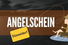 Angelschein Düsseldorf – Kurs, Prüfung & angeln ohne Angelschein