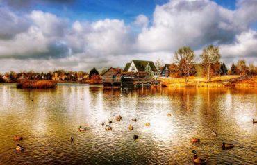 Angelschein Gifhorn (Niedersachsen) – so kriegst du ihn schnell & zügig