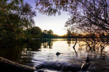 Angelschein Gummersbach – 3 einfache Schritte zum Fischereischein