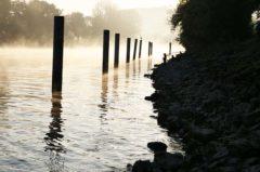 Angelschein Heinsberg – So kriegst du den Fischereischein im Kreis