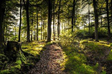 Angelschein Lüdenscheid – Wie du ihn schnell bekommst