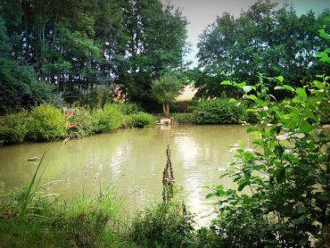 Angelschein Marl – so schaffst du die Fischerprüfung