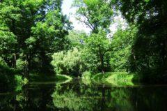 Angelschein Pforzheim – wie du ihn schnell & zügig bekommst