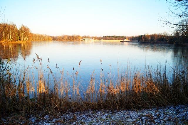 Angelschein Rheine Quendorfer See