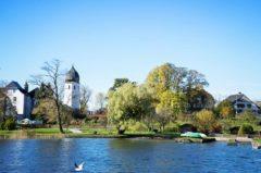 Angelschein Rosenheim – so kriegst du den Fischereischein schnell