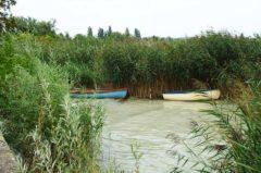 Angelschein Stendal – so kriegst du den Fischereischein in Sachsen-Anhalt
