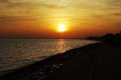 Angelschein Wilhelmshaven – alles was du wissen musst (Leitfaden)