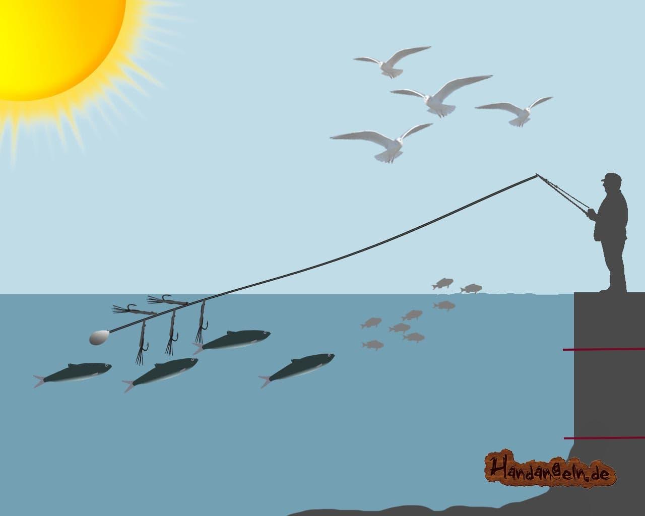 Anwendung Makrelenmontage Ufer Angler Paternoster