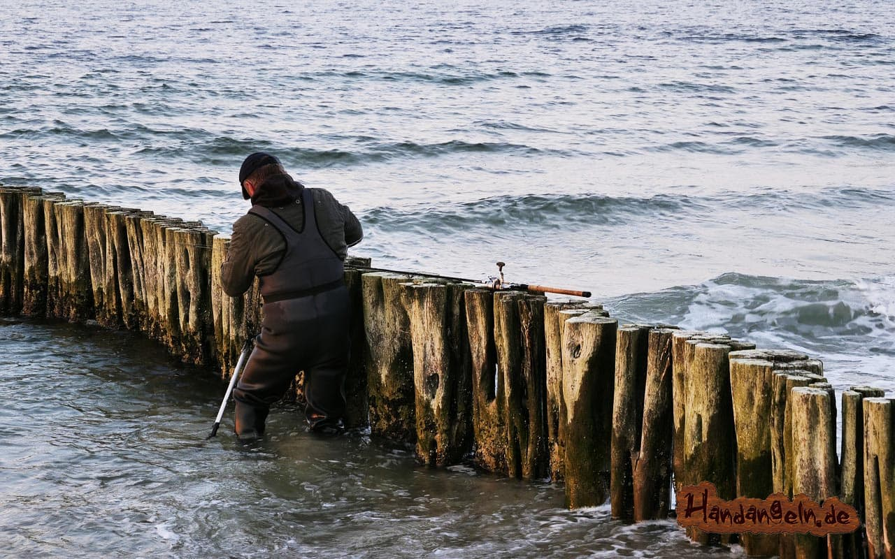 Barsch angeln Buhne Angler Gewässer