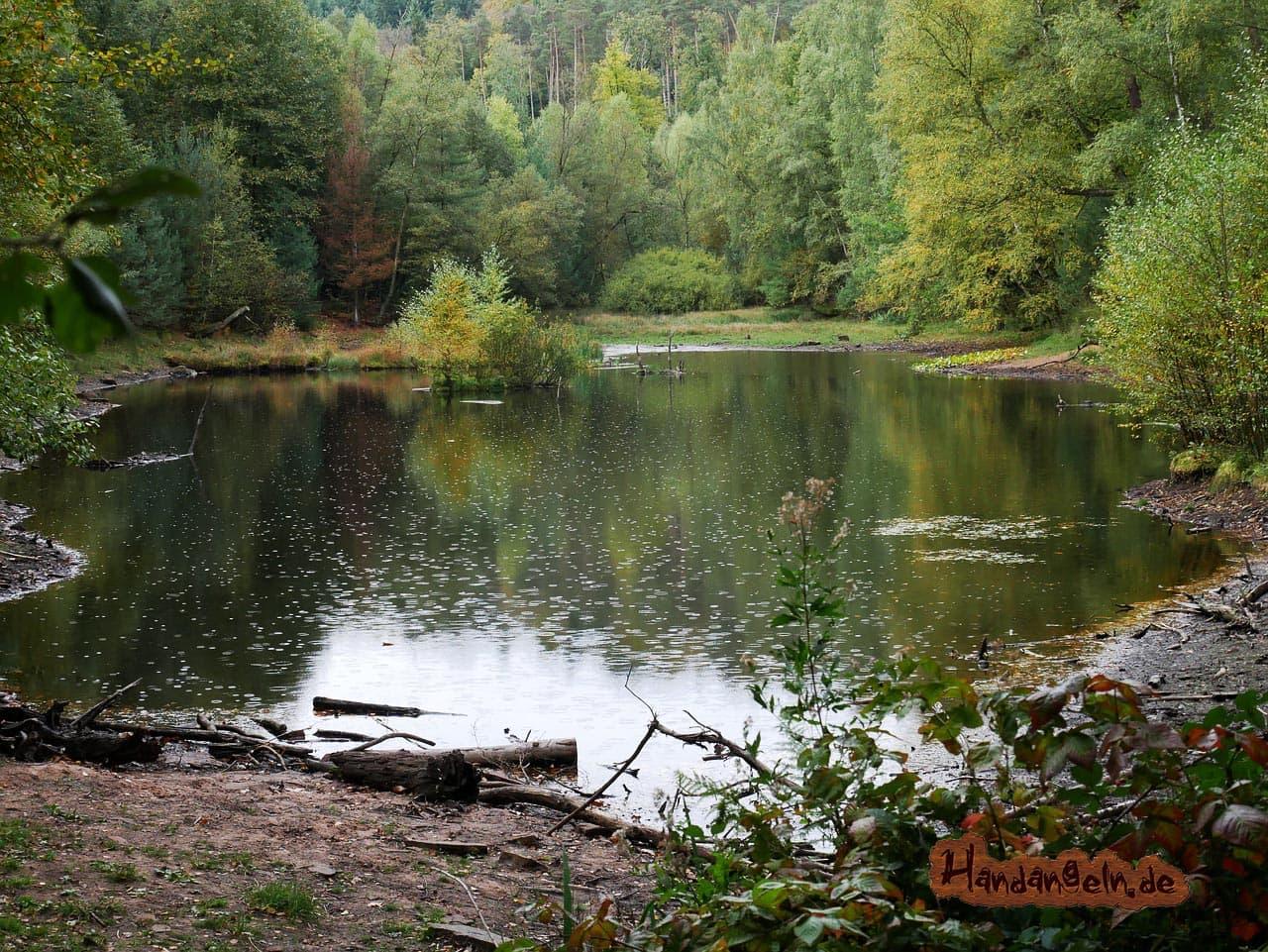 Barsch angeln bei Regen See Teich Wald