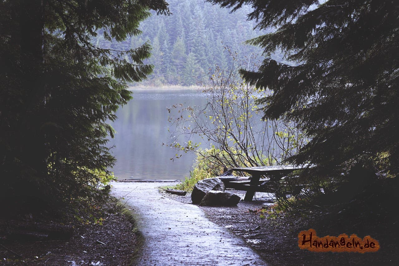 Barsch angeln nach Regen Wald Bank See