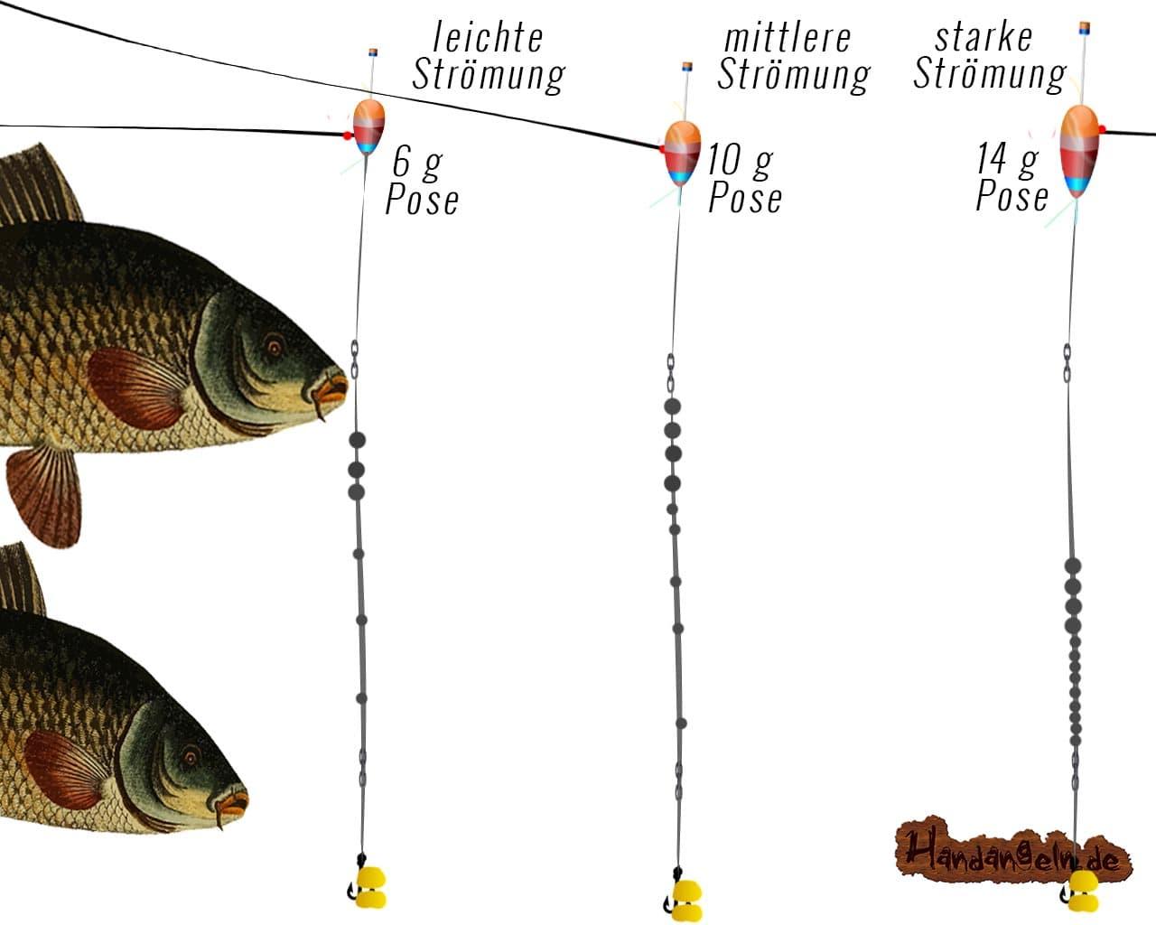 Illustration Bolognese Montage Strömungen