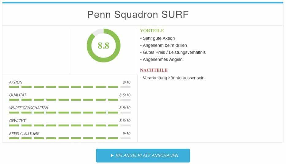 Brandungsruten Test - Penn Squadron SURF Brandungsrute Ergebnis 2