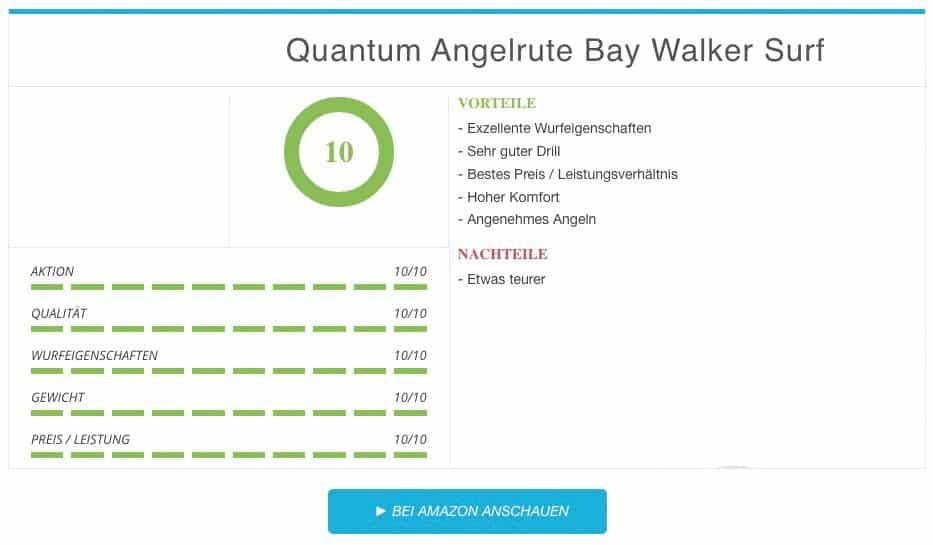 Quantum Angelrute Bay Walker Surf beste Brandungsrute Vergleichssieger