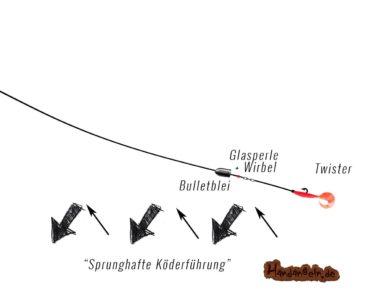 Carolina Rig – 8 effektive Tipps für Montage, Rute, Köder, Führung etc.
