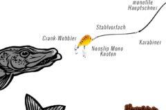 Wobbler Montage: top 4 Zander Forelle & Hecht [richtig montieren + Tipps]