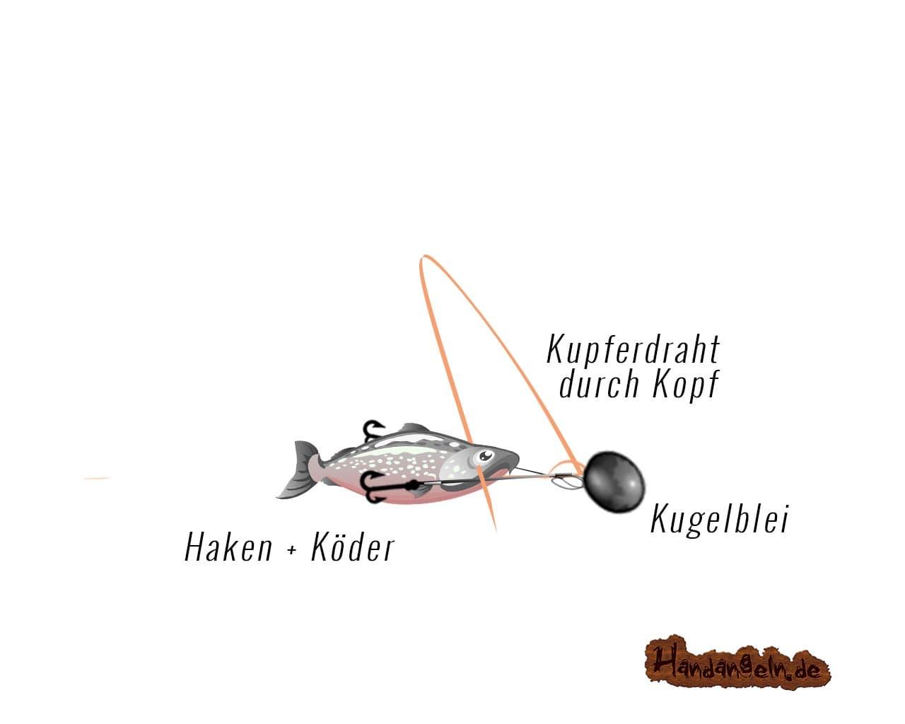 Illustration Drachkovitch System Montage Schritt 7 Draht durch Kopf ziehen