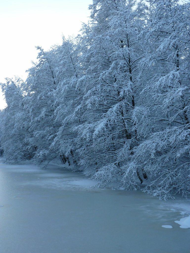 Eisangeln am Ufer