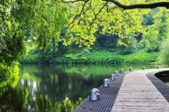 Fischerprüfung Bremen – alle Infos damit du die Fischereiprüfung bestehst