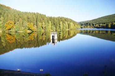 Fischerprüfung Niedersachsen – 5 Tipps damit du die Prüfung bestehst