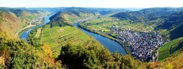 Fischerprüfung Rheinland Pfalz – alle Infos damit du die Prüfung bestehst