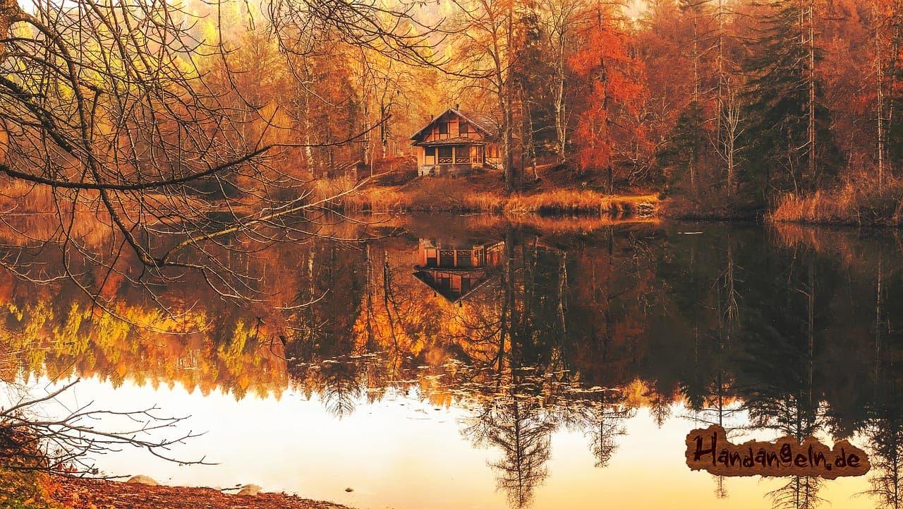 Forellenangeln Herbst See Angelhütte
