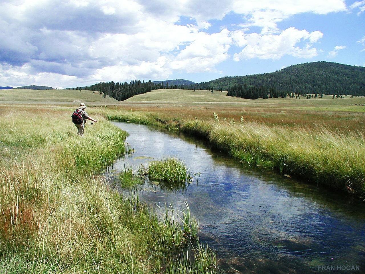Forellenangeln am Fluss