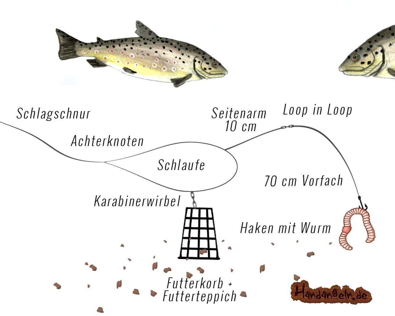 Futterkorb Montage Forelle Fluss Seitenarm