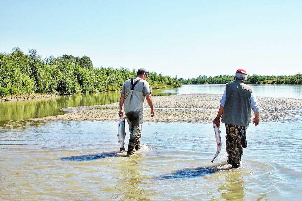 Lachsangeln - Lachse mit nach Hause nehmen