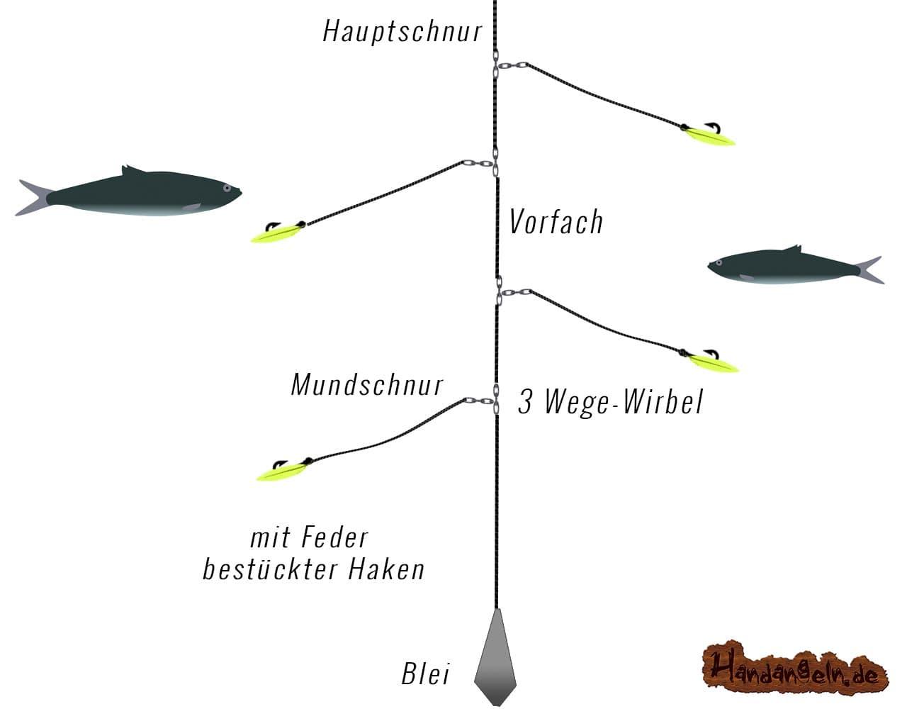 Makrelen-Montage