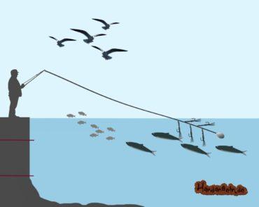 Paternoster Montage top 6: Hering, Makrelen, Hecht, Dorsch, Barsch & Aal
