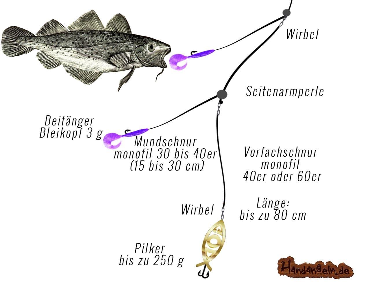 Illustration Montage Dorsch Paternoster