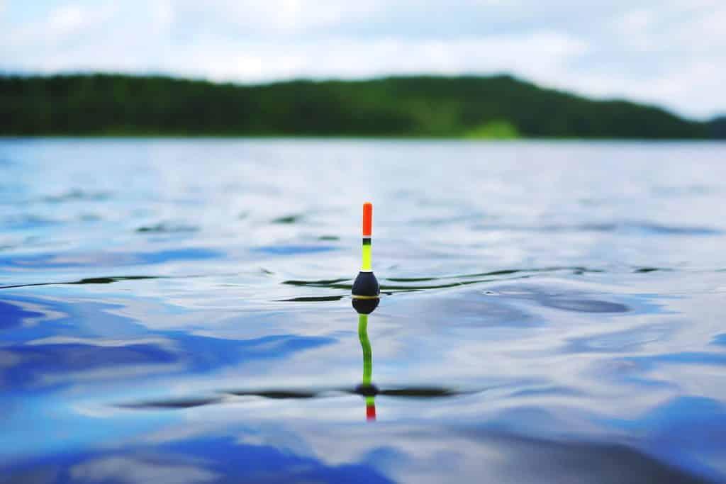 Posenmontage zum Schwarzbarsch angeln im Einsatz