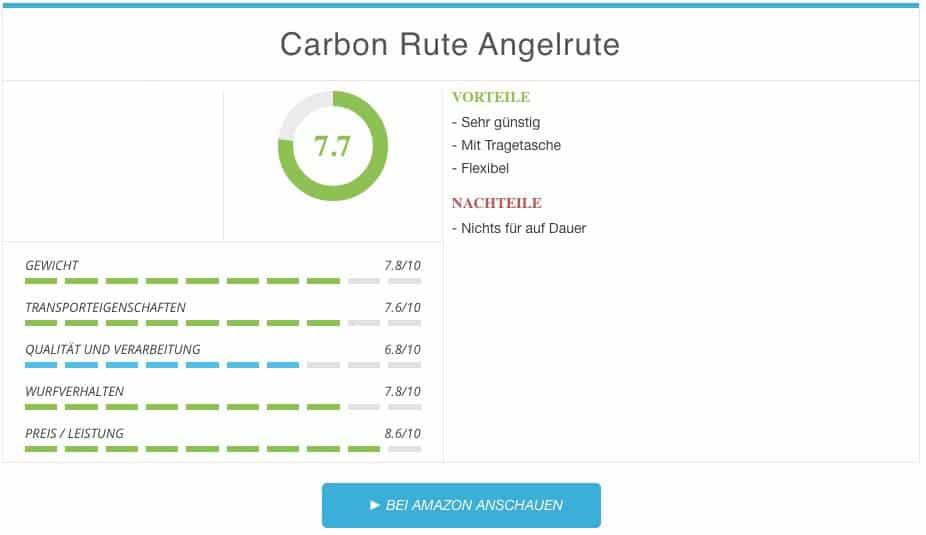 Soytich Carbon Reiserute mit Tragetasche Test