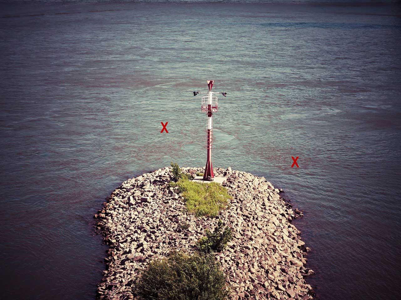 Rhein Buhne Rapfen angeln