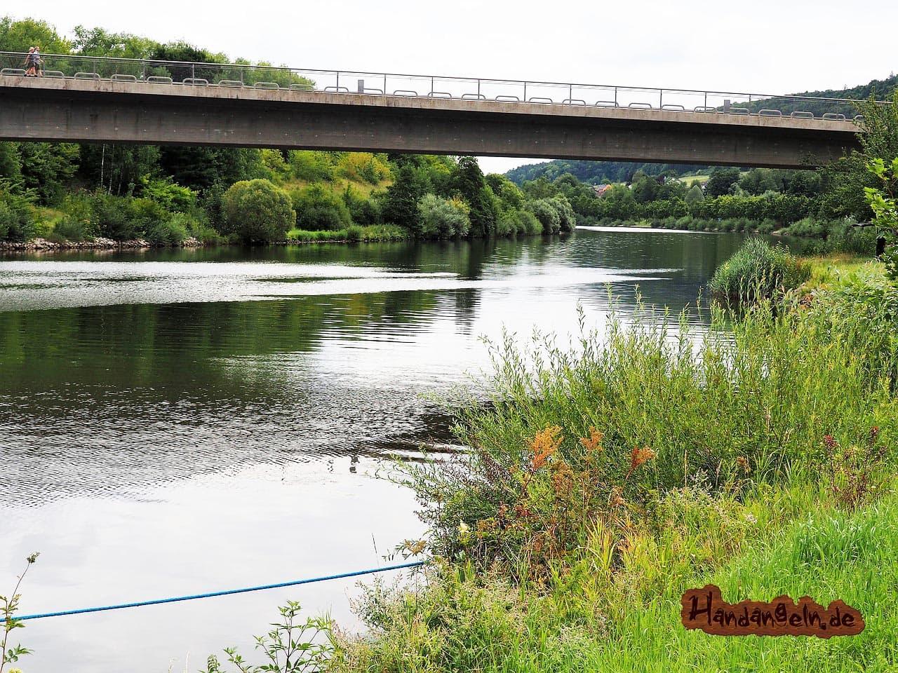 Schleien angeln im Kanal