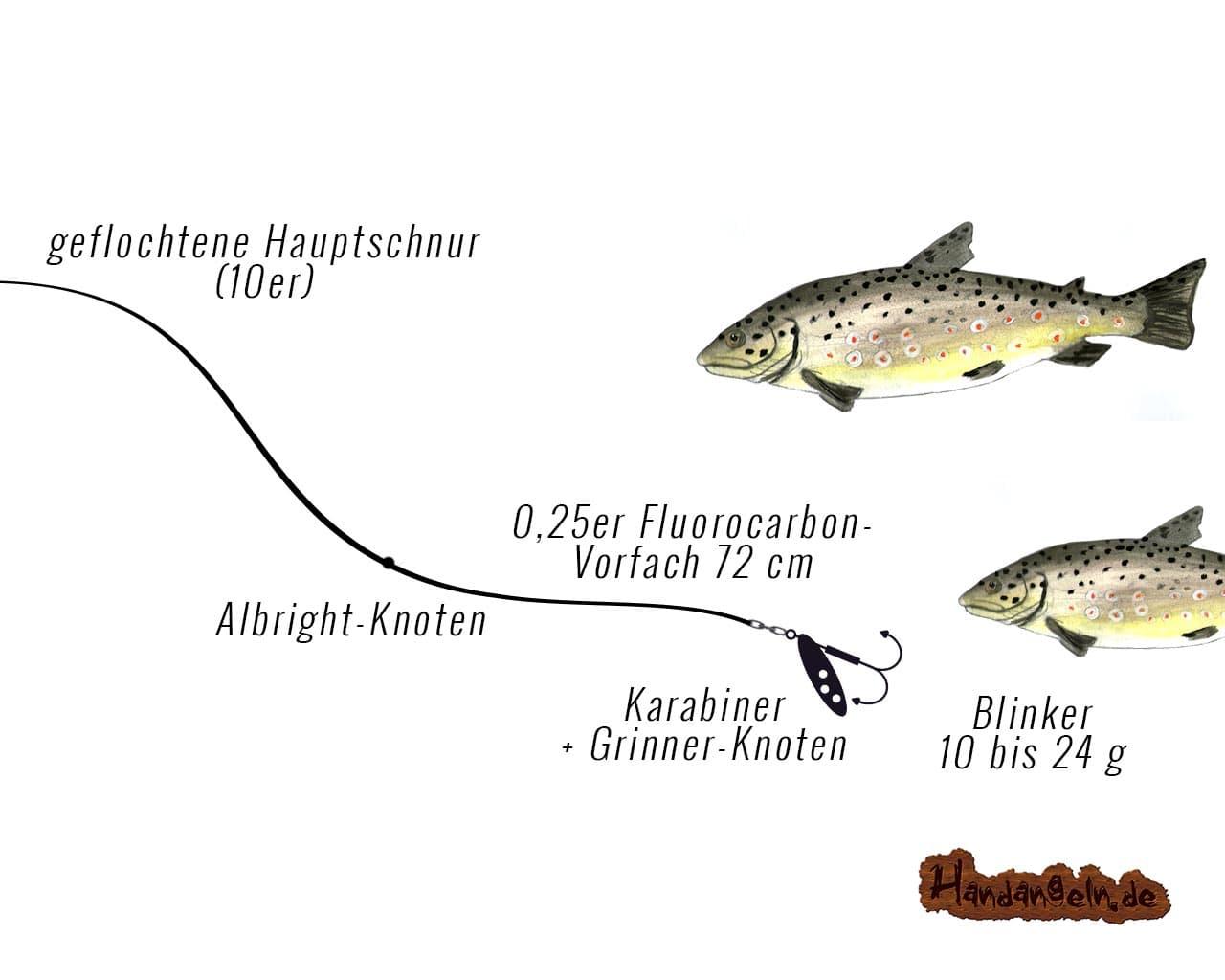 grafische Darstellung Spinnfischen Montage Forelle