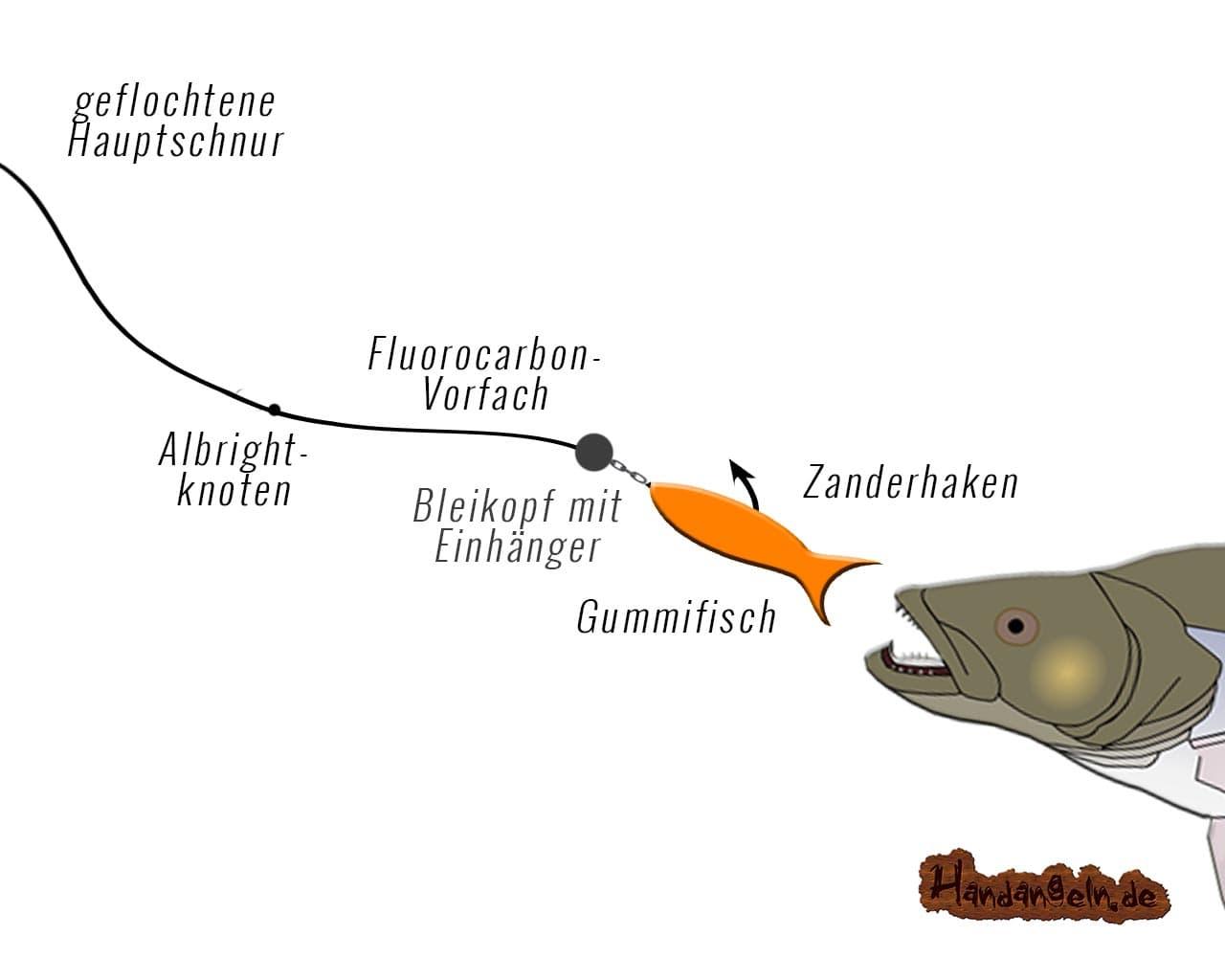 Illustration Spinnfischen Zander Angelmontage
