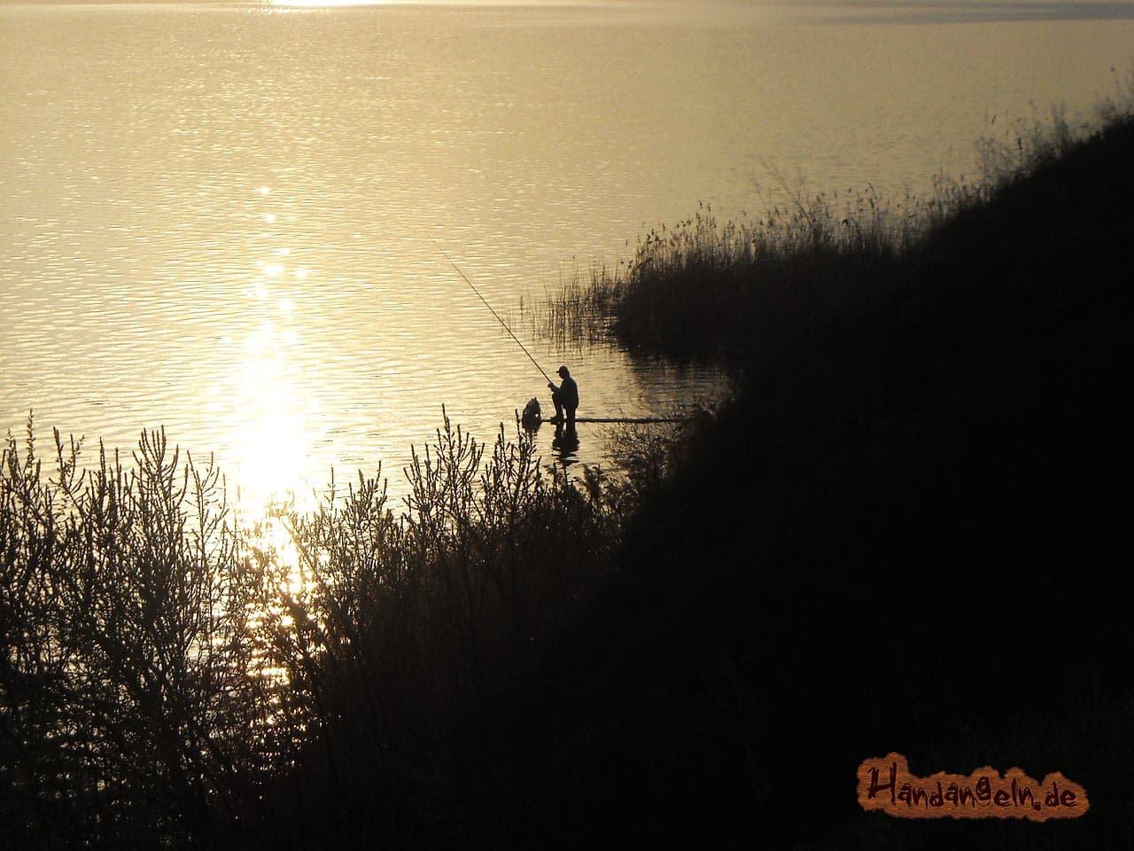 Störangeln im Sommer Angler See Teich Ufer