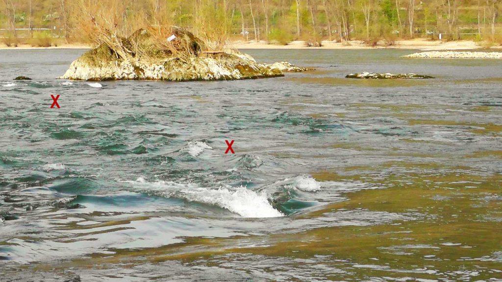 Strömungen zum Rapfen angeln als Standort