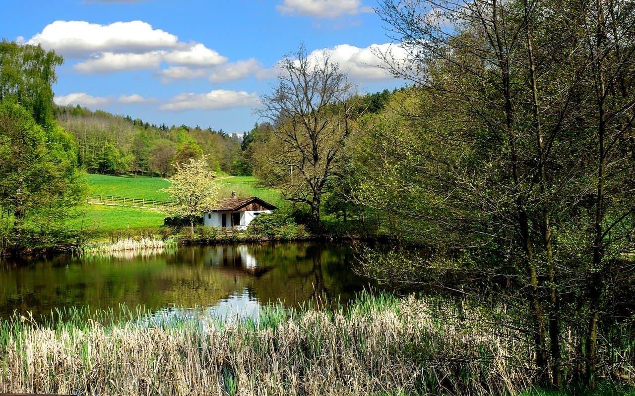 Thüringer Wald Angeln